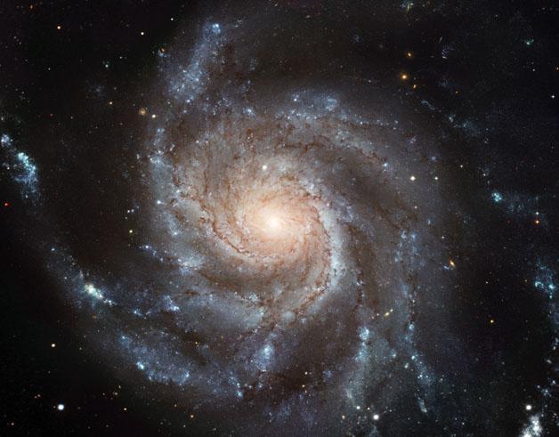 کهکشان فرفره
